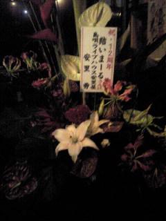 お花が届きました